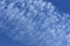 Mjukt pösigt molnbildande i den blåa himlen royaltyfria bilder