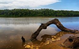 Mlalazi River Stock Photography