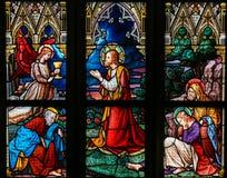 Målat glass - Jesus i trädgården av Gethsemane Royaltyfria Foton