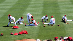 MLB St Louis Cardinals Stock Photos