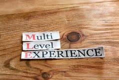 MLE- multi experiência nivelada Fotos de Stock Royalty Free