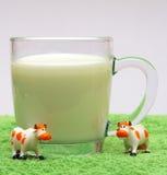 mleko Obrazy Stock