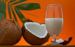 mleko kokosowe Fotografia Stock