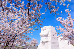 MLK Memorial. WASHINGTON - APRIL 12, 2015: The memorial to the civil rights leader Martin Luther King, Jr. during the spring season in West Potomac Park Stock Images