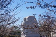 MLK-monument i vår Royaltyfri Foto
