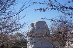 MLK Monument in spring Royalty Free Stock Photo