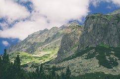 Mlynicka dal i höga Tatras Arkivfoton