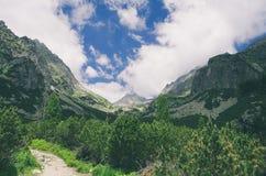 Mlynicka dal i höga Tatras Fotografering för Bildbyråer
