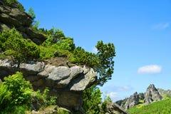 Mlynicka Valley in Vysoke Tatry High Tatras, Slovakia Royalty Free Stock Photos