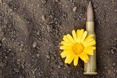 7 62mm子弹和花 免版税库存图片