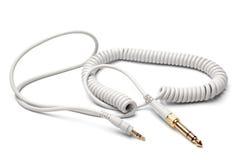 3,5mm对6,3mm Strereo TRS男性音频缆绳的立体音响男性 免版税库存图片