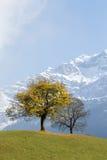 1 2 100 200mm 4 5 высокогорный iso k l метка Швейцария usm f f18 ii ev eos canon d dan ef70 осени 8l ll Стоковое Изображение