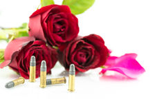 9 mm bullet and beautiful red rose on white background Stock Images
