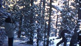 (8mm tappning) man som 1965 hugger av trädet i skog