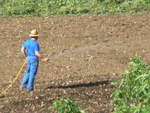 MM00-0905 TRV C del MONTE FARMER TEL FZ7 Stock Photography