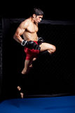 MMA Stock Images