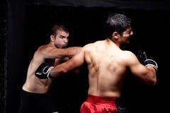 MMA Imagens de Stock