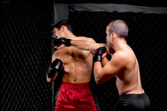 MMA Royalty Free Stock Photo