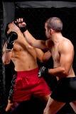 MMA Stock Image