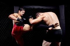 MMA Photo libre de droits