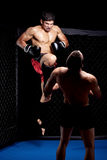 MMA royalty free stock photography