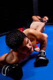MMA Stock Photography