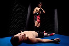 MMA Stock Photos