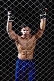 MMA Royalty Free Stock Photos
