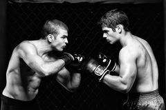 MMA Royalty Free Stock Images