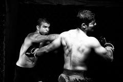 MMA royalty-vrije stock afbeeldingen