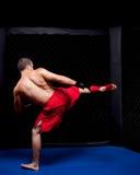 MMA Stock Photography