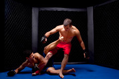 MMA. Mixed martial artists fighting - MMA stock photo