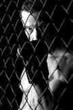 MMA athlete Royalty Free Stock Photography
