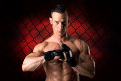 MMA athlete Royalty Free Stock Images