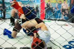 MMA Boxers fighters fight in fights without rules. In the ring octagons Stock Photos