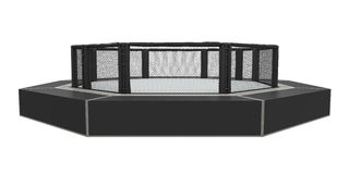 MMA Cage Arena. Isolated on white background. 3D render Stock Photo