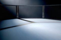 Free MMA Cage Night Stock Photos - 80677303