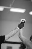MMA champion Stock Images
