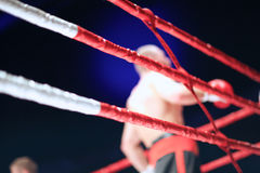 MMA competition, details of the fight ring Royalty Free Stock Photos