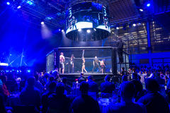 MMA fight turnament. Novi Sad, Serbia - November 05 2016 : MMA - SBC fight turnament. Crowd in turnament arena extreme Sport. Fight night, profesional athletes royalty free stock images