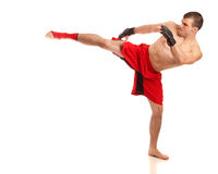 MMA Fighter. Martial artist in red. Studio shot over white Stock Photography