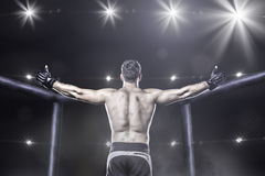 Mma fighter in arena celebrating win, behind view Stock Images