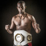 Mma fighter belgian champion Royalty Free Stock Photography