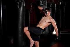 MMA Fighter doing knee kicks Stock Photography