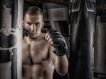 Mma fighter in gloves. Mma fighter in fighing stance near next to punching bags royalty free stock photo