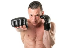 MMA fighter isolated in white Royalty Free Stock Image
