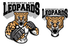 MMA fighter leopard. Vector of MMA fighter leopard Royalty Free Stock Photography
