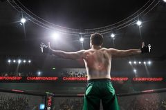 Mma fighter standing in fighting cage royalty free stock photos