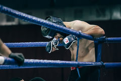 MMA fighter stands in corner of ring before fight Stock Photos