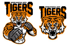 MMA fighter tiger. Vector of MMA fighter tiger Stock Images